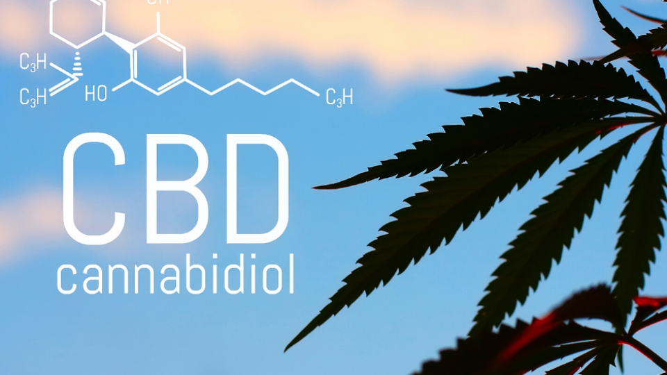 CBD–Hope or Hype?